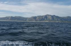 5 - Hermanus coast line (2)