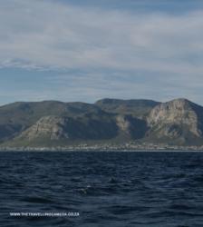 5 - Hermanus coast line (3)