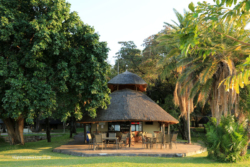 Kariba Spurwing Lodge (9)