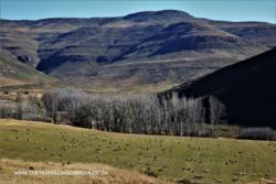 Mosheshs road Rhodes to Mountain Shadow Hotel (3)