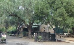 Middleton village Restuarant(3)